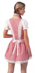 Dirndl Kleid pink
