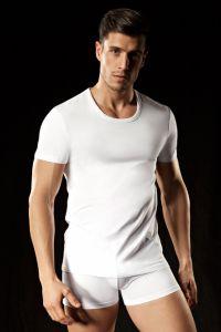 Lisca Herren T-Shirt aus Baumwolle S-XXL